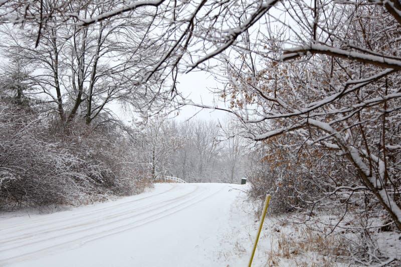 Allée de l'hiver photos libres de droits