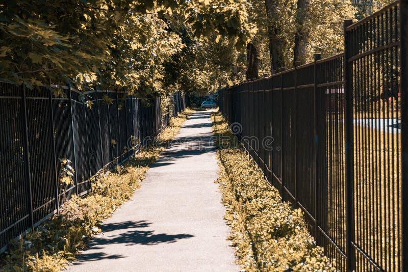 Allée du parc de ville dans des couleurs d'automne photo stock