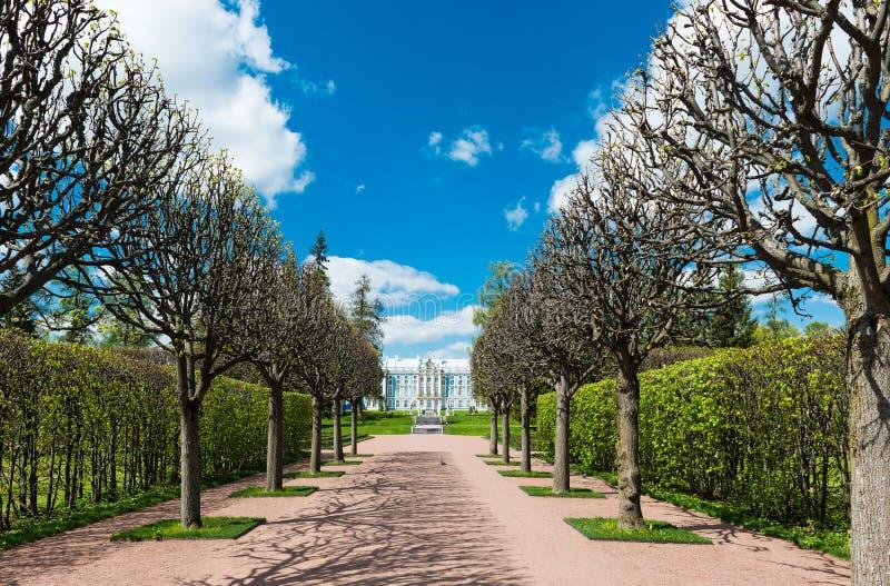 Allée en Catherine Park, Tsarskoye Selo photos stock