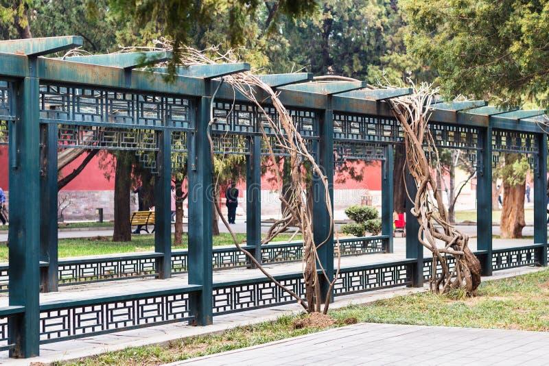 allée en parc public dans la ville de Pékin au printemps photographie stock libre de droits