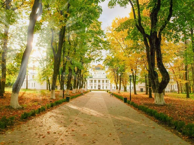 Allée menant au palais en parc d'automne image stock