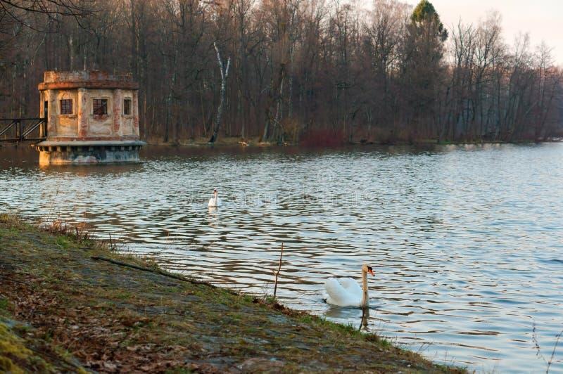 All?e sur le lac, vieille plate-forme d'observation sur l'?tang, belv?d?re d'observation sur le lac photos stock