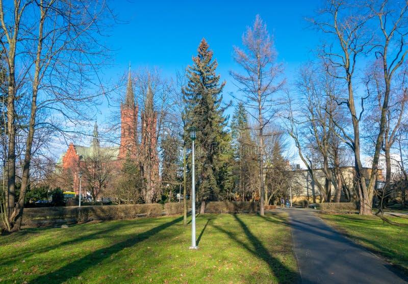 Allée tranquille de parc de ville avec la lanterne, les sapins et d'autres arbres dans Tarnow, Pologne image libre de droits