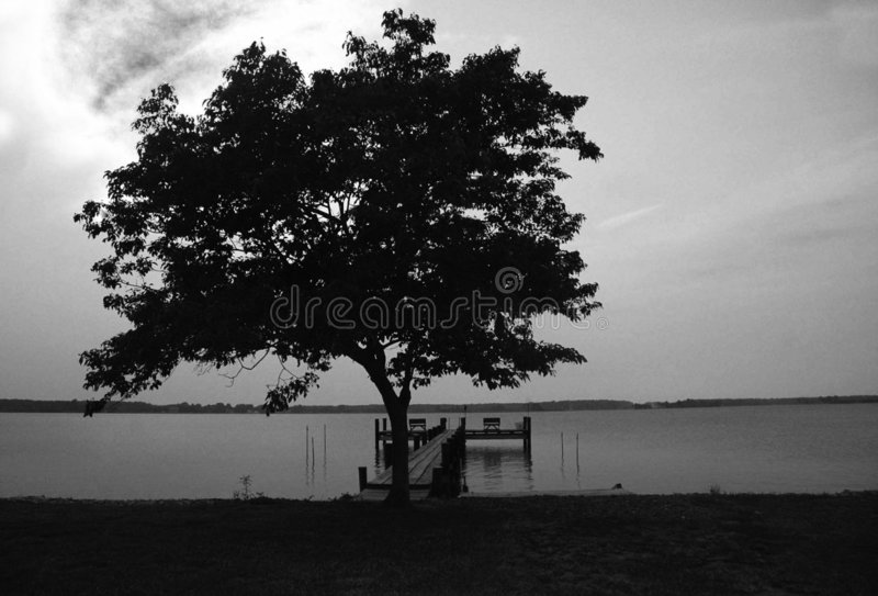 Download All alone stock photo. Image of night, lake, water, land - 3233674