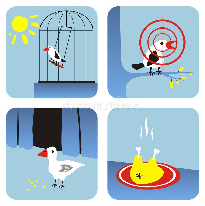 All about birds. All kinds of birds - in a cell, on a branch, in an agriculture, on a frying pan vector illustration
