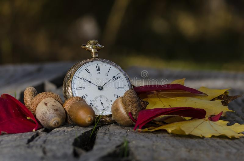It is All About the Passage of Time. It is All About the Relentless Passage of Time royalty free stock photos