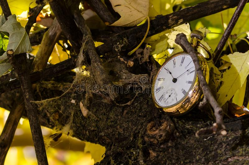 It is All About the Passage of Time. It is All About the Relentless Passage of Time royalty free stock image