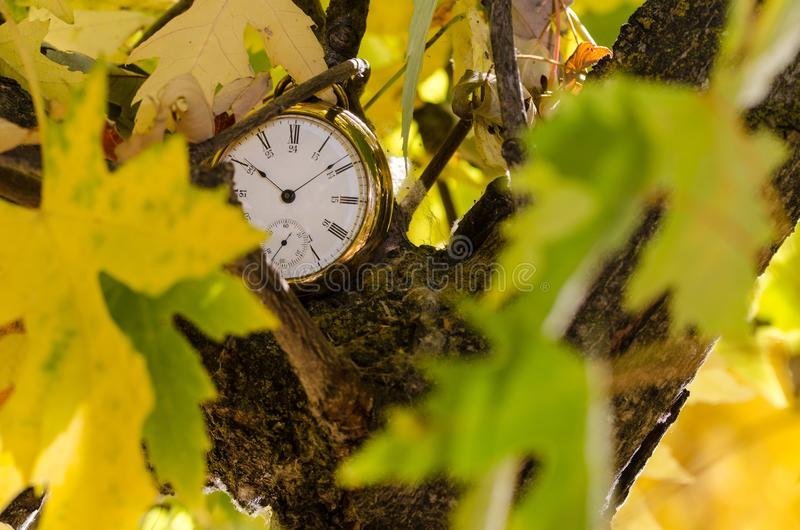 It is All About the Passage of Time. It is All About the Relentless Passage of Time royalty free stock photography