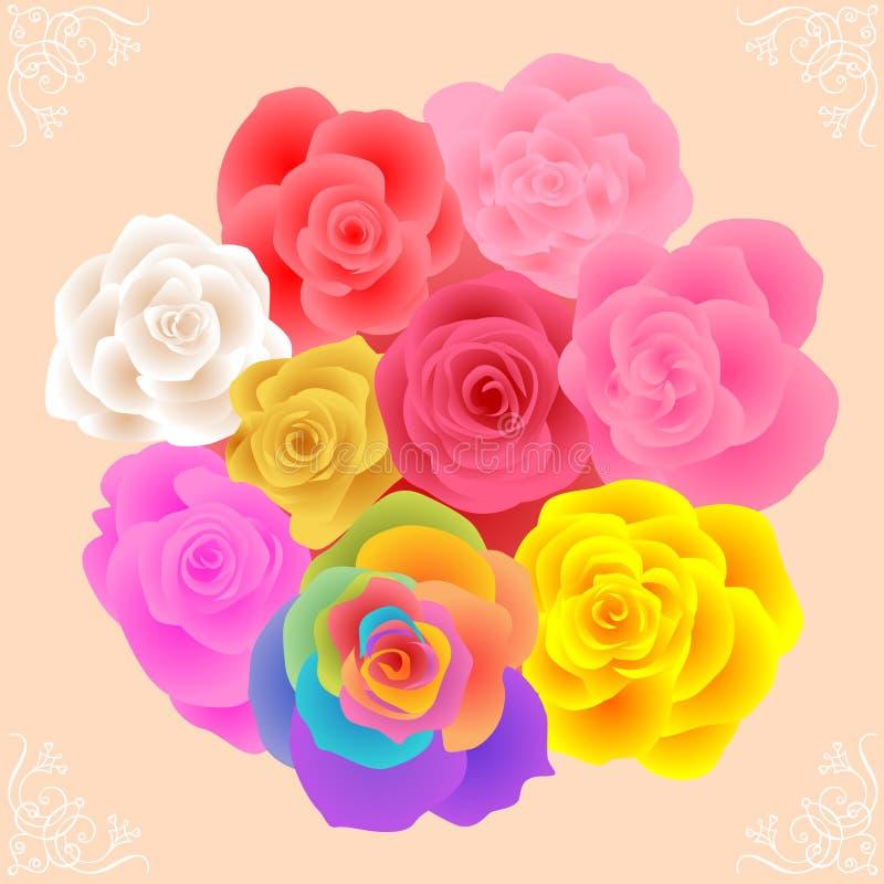All Rose Flowers vector illustration