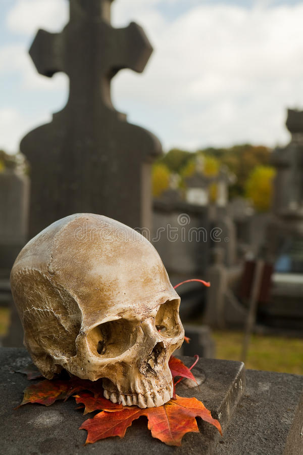Free All Saint S Skull On A Grave Royalty Free Stock Image - 16231436