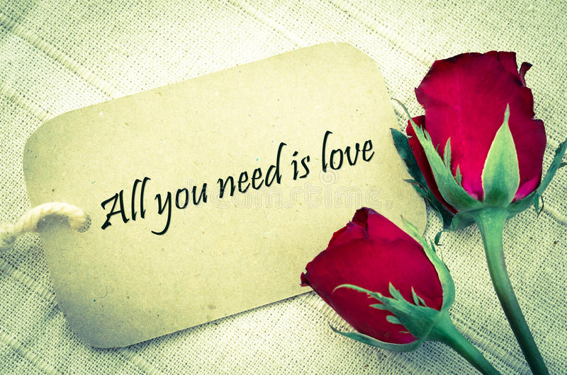 All you need is love. stock images