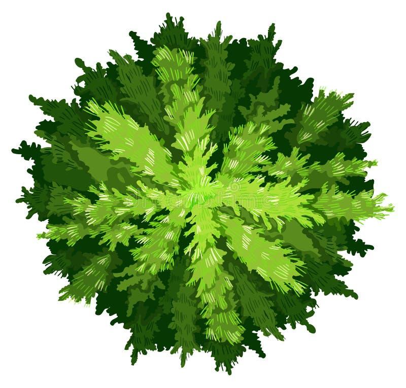 alla är olika utmaningar sörjer surrounds till treevegetation vektor illustrationer