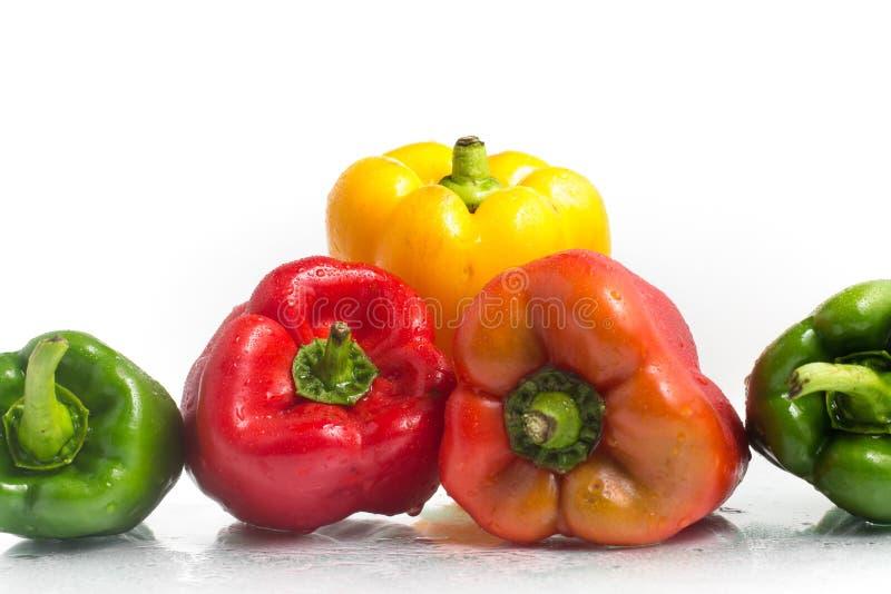 Alla färger av spanska peppar royaltyfri fotografi