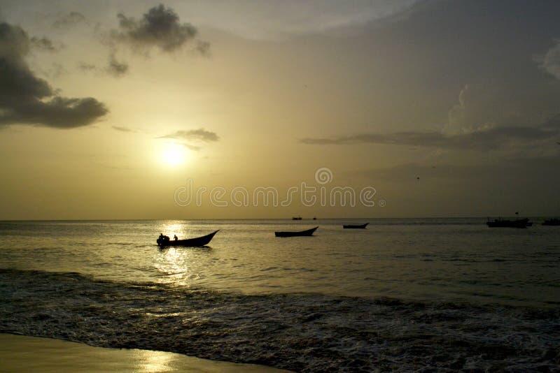 Alla luce del tramonto immagini stock