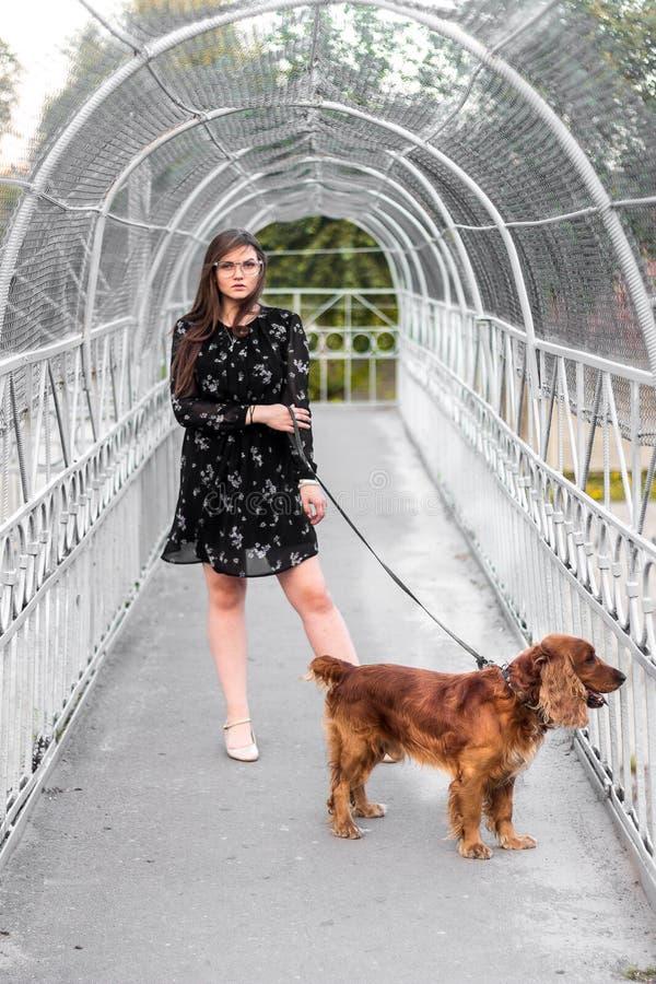 Alla moda in breve vestito che tiene il cane di razza del collare sul ponte immagine stock libera da diritti