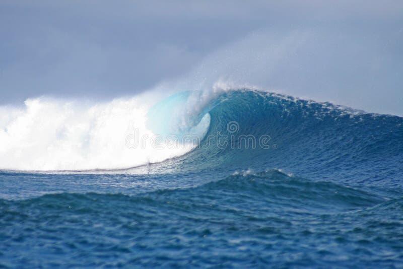 Alla ricerca dell'onda perfetta fotografie stock