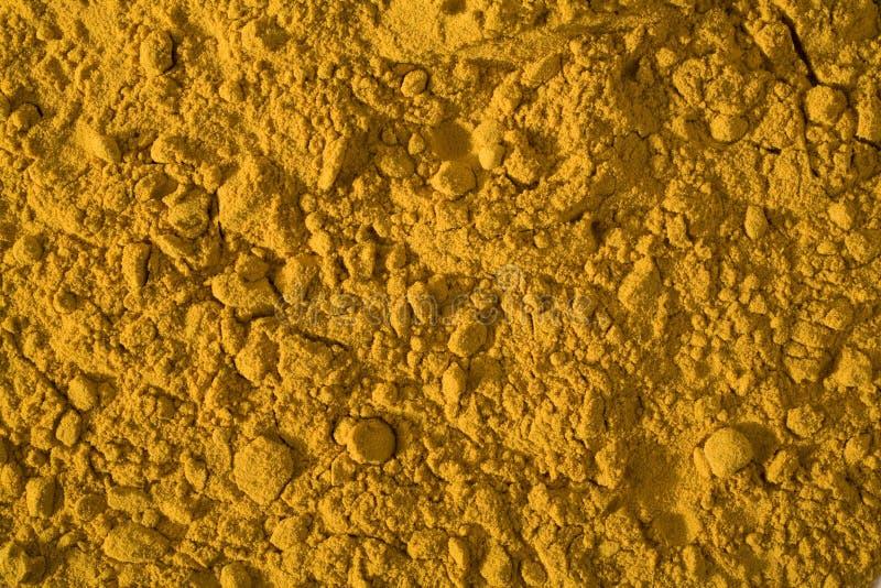 Alle Gelbwurz stockfotografie