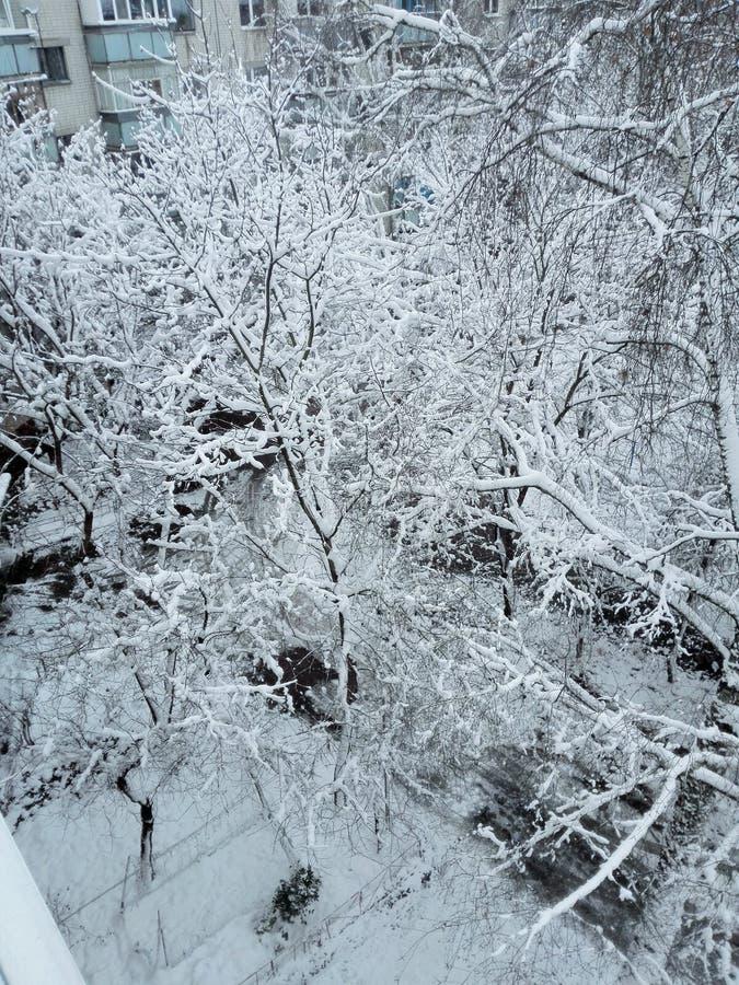 Alle verrukkingen van de winter royalty-vrije stock fotografie