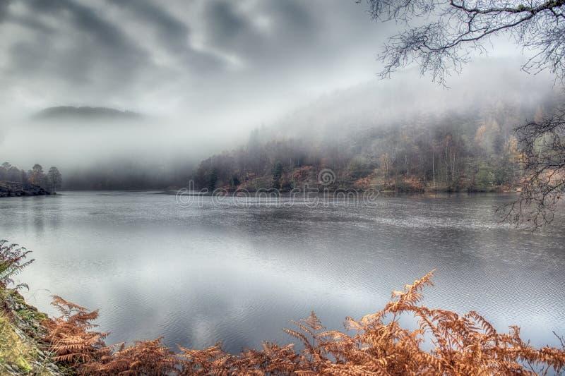 Allean im Nebel stockbilder