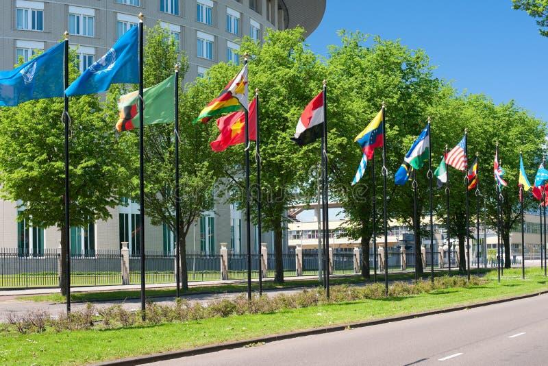 Allee der Markierungsfahnen in Den Haag lizenzfreies stockbild