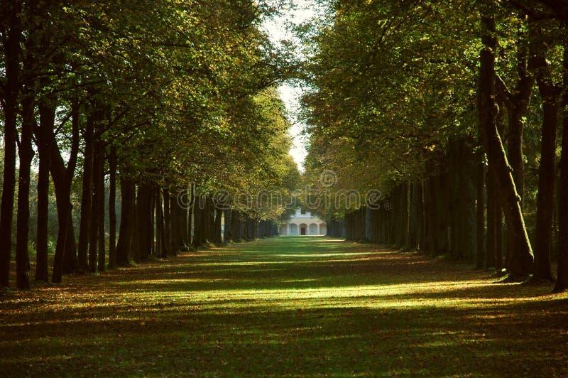 Allee in einem Park im Herbst stockfotos