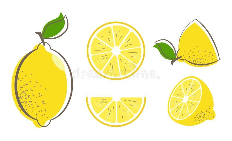 Allegagione del limone illustrazione vettoriale