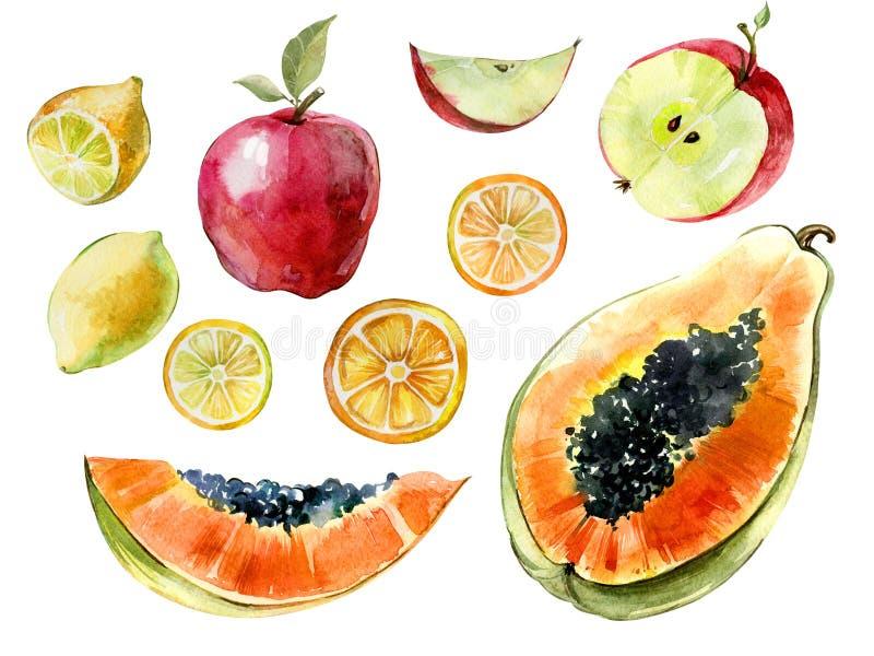 Allegagione dell'acquerello Papaia, limone, taglio della mela a metà e fette isolate su fondo bianco Frutta tropicale nella sezio royalty illustrazione gratis