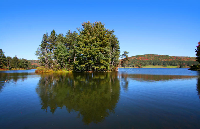 Download Allegheny national forest stock image. Image of pond - 16038453