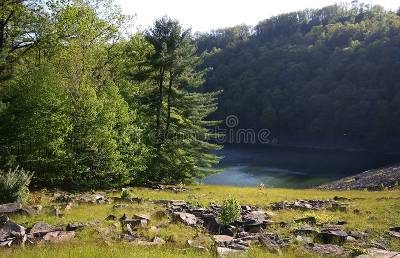 Allegheny State Park royalty free stock photo