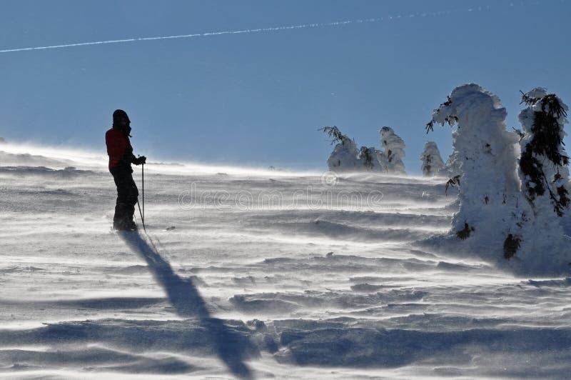 Allein alpiner bereisenSkifahrer stockbild