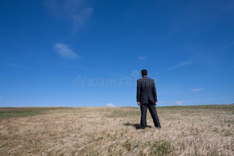 Alleine am Feld stockfotografie