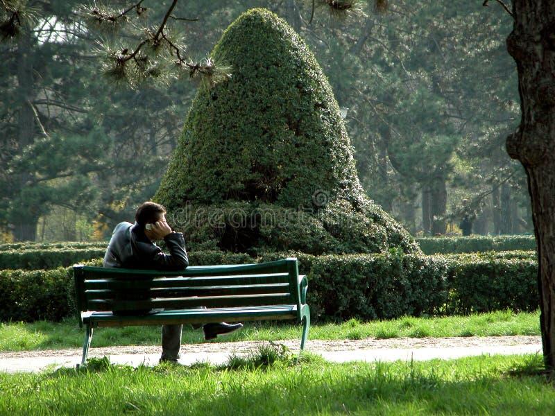 Alleine im Park stockbilder