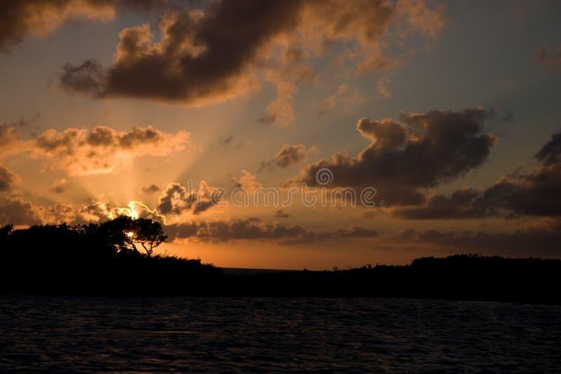 Download Allen's Cay, Exumas, Bahamas Stock Image - Image: 12985409