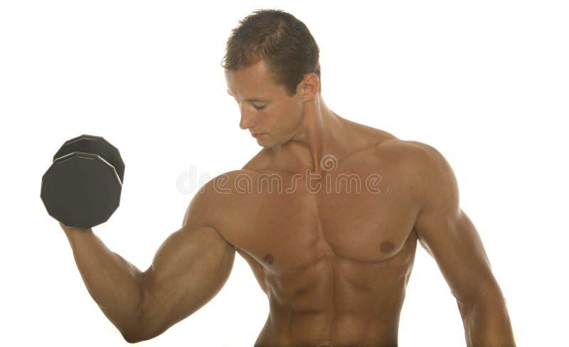 Allenamento del braccio del costruttore di corpo immagine stock