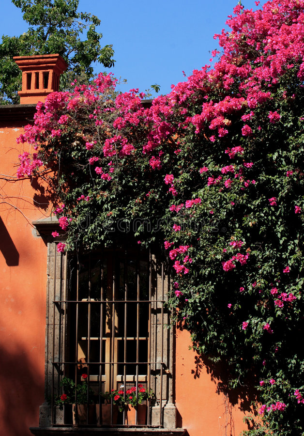 allende de Guanajuato San Miguel/street zdjęcia stock