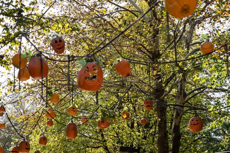 ALLENTOWN, PA - 22. OKTOBER: Halloween-Dekorationen an Dorney-Park in Allentown, Pennsylvania lizenzfreies stockbild