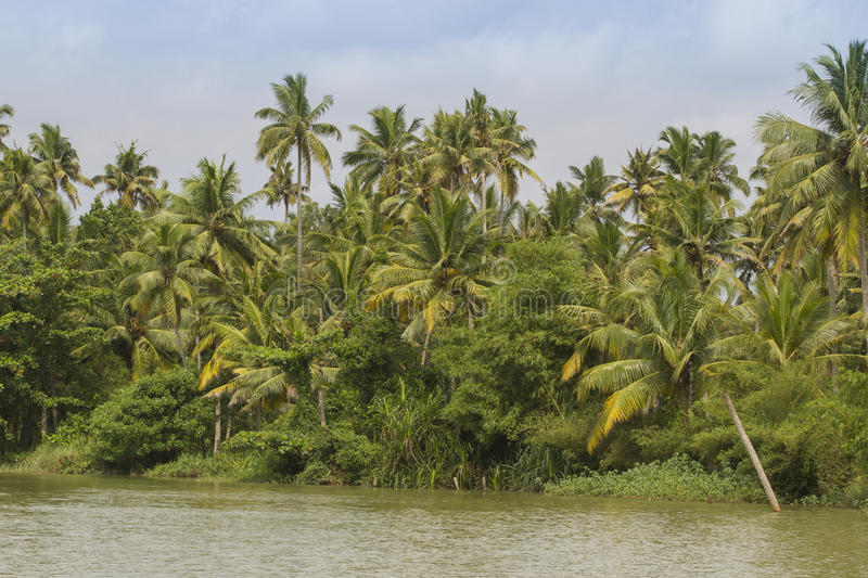 Allepey backwaters boats in Kerala state, India. Channels on the river in the city of Allapuzha stock photo