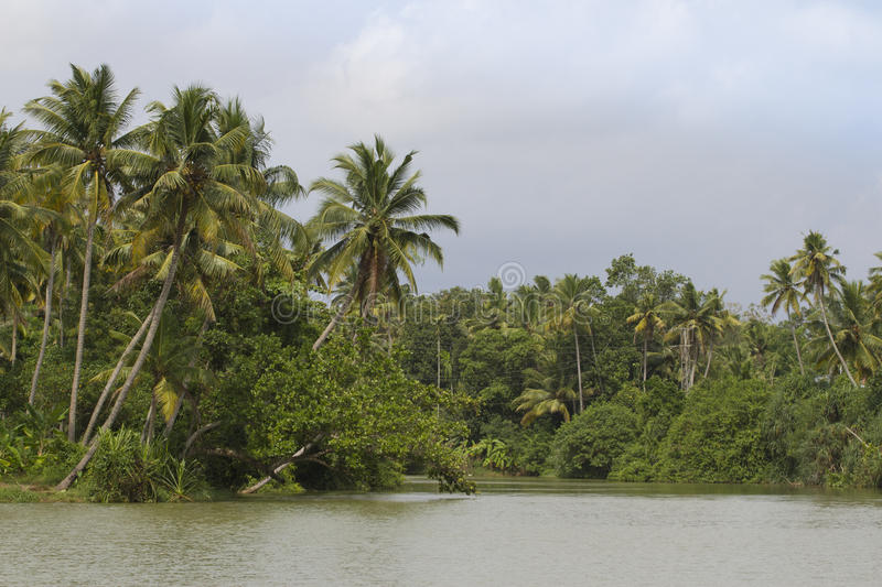 Allepey backwaters boats in Kerala state, India. Channels on the river in the city of Allapuzha stock photography