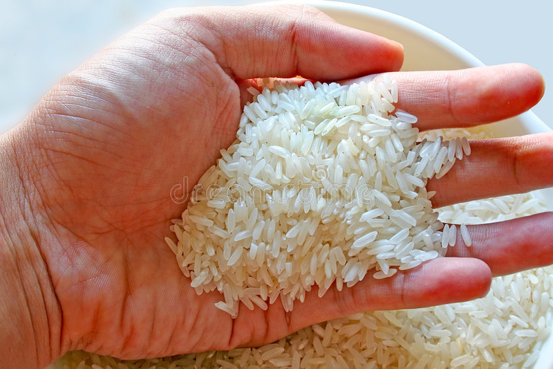 Aller Reis stockbilder