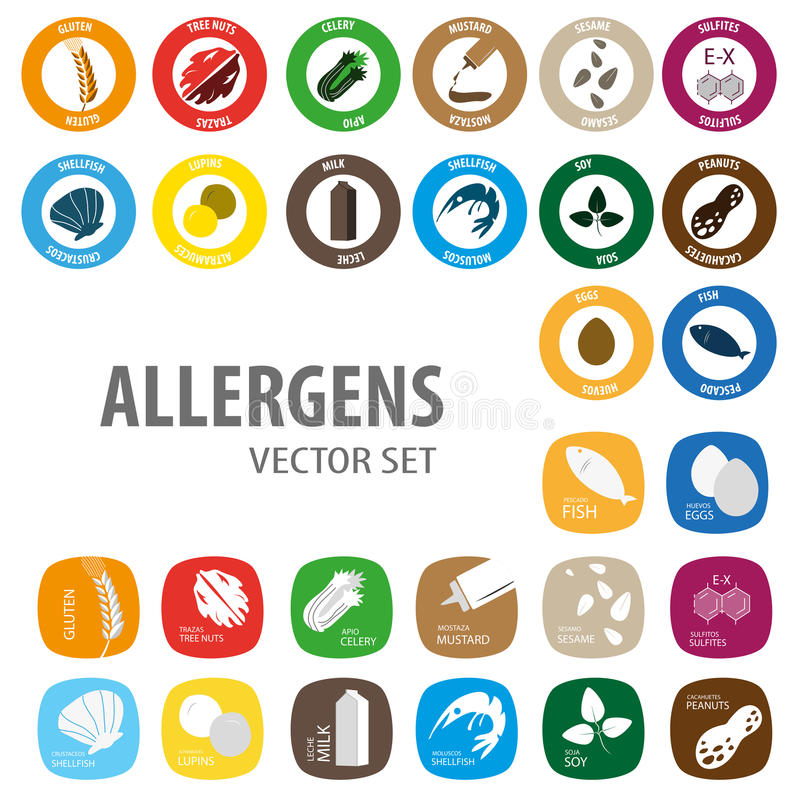 Allergens colorful set. Food allergies icons vector set vector illustration