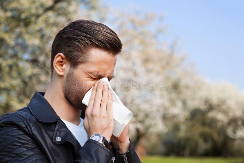 Allergi vår, man arkivfoton