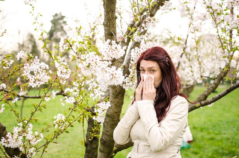 Allergia immagini stock libere da diritti