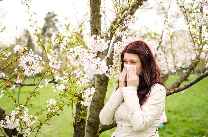 Allergia del polline fotografia stock