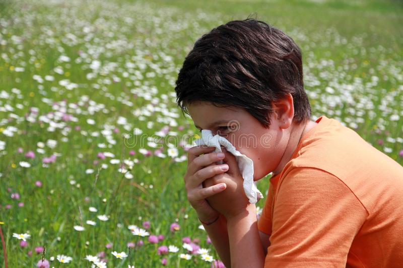 Allergic boy to pollen and flowers. Allergic child to pollen and flowers with a handkerchief while sneeze in the middle of the Minesweeper stock photos
