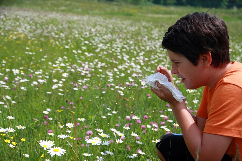 Allergic child to pollen and flowers with a handkerchief while s. Neeze in the middle of meadow stock image