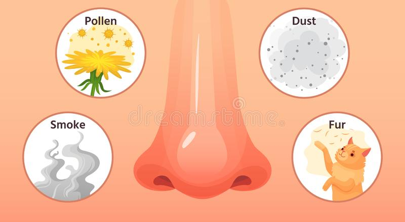 Allergic sickness. Red nose, allergy illnesses symptoms and allergens. Smoke, pollen and dust allergies cartoon vector. Allergic sickness. Red nose, allergy vector illustration