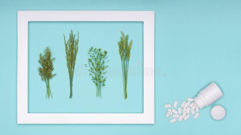 allergie Allergenen, antihistaminpillen, seizoengebonden allergieën De minimale vlakte legt de allergie van het grasstuifmeel stock foto