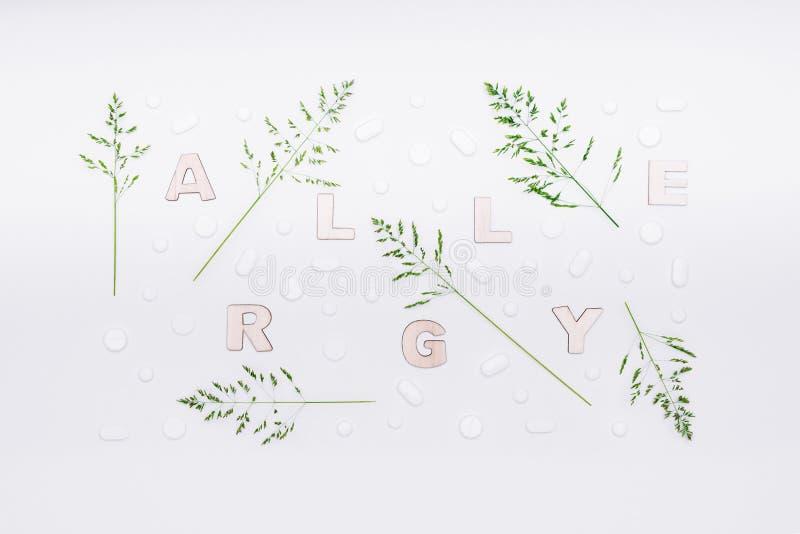 Allergie, Allergenen, Seizoengebonden allergieën De minimale vlakte van de Grasallergie legt concept De pillen van allergiemadica stock foto's