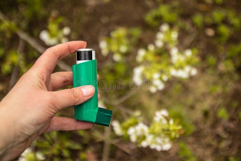 Allergie aux usines de floraison Concept d'inhalateur d'asthme photos libres de droits