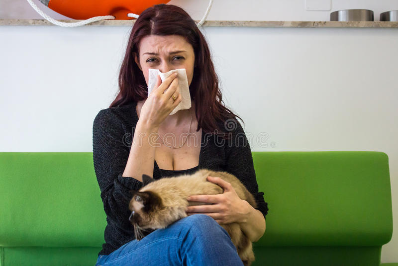 Allergie de cheveux de chat photographie stock libre de droits